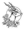 antelope head animal engraving vector image