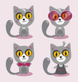 cartoon character in flat style cat sit in vector image