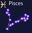 constellation pisces with stars in night sky vector image vector image