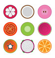 isolated mixed fruits vector image vector image