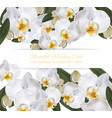 orchid flowers card banner poster realistic vector image vector image