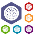 peppercorns on a plate icons set hexagon vector image vector image