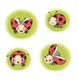 set ladybugs vector image vector image