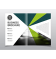 Startup presentation layout or business flyer vector image