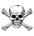vintage skull and crossbones sign vector image vector image