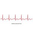 ecg heartbeat line electrocardiogram normal vector image vector image