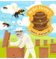 honey farm poster with male beekeeper at apiary vector image vector image