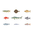 river or sea underwater fish set isolated on white vector image