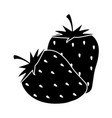 strawberries fruits fresh harvest in silhouette vector image