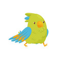 walking parrot with shiny eyes bird character vector image vector image