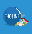 choline vector image vector image