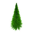 christmas tree simple on white vector image