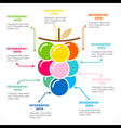 colorful fruit info-graphics design vector image vector image