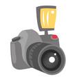 digital photo camera cartoon vector image