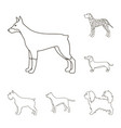 dog breeds outline icons in set collection for vector image