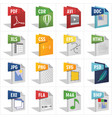 file type in 3d vector image vector image