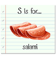 Flashcard letter S is for salami vector image vector image