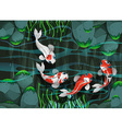 Four fish swimming in the pond vector image vector image