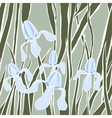 Graphic stylized image of iris flower vector image vector image