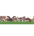 mushrooms border seamless colorful sketch various vector image