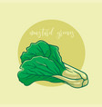 mustard greens vegetable vector image vector image