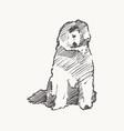 old english sheepdog dog realistic sketch vector image vector image