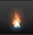 realistic design burning blaze element vector image