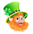 st patricks day leprechaun face vector image