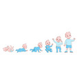 baby growth process life cycle stages development vector image vector image