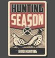 bird hunting poster rifle pheasant and quail vector image vector image