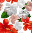 hibicus flowers pattern 3 vector image vector image