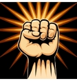 Raised Fist Symbol vector image