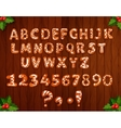 Xmas gingerbread alphabet on wooden background vector image