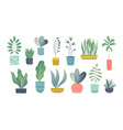 flat houseplants indoor doodle garden plants vector image