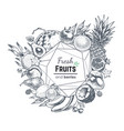 fruits and berries hand drawn banner frame vector image