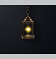 ornamental arabic lantern glowing at night vector image