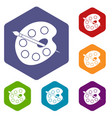 palette icons set hexagon vector image vector image