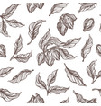 pattern cocoa sketch vector image
