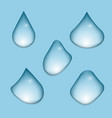 water drops realistic water drops isolated on vector image
