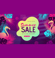 colorful summer big sale tropical gradient poster vector image