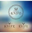 logo with a set knives on abstract background vector image