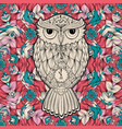 owl bird isolated on milticolored background vector image