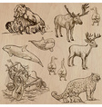 Animals around the World part 5 Hand drawn pack vector image
