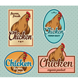 Chicken vintage labels set vector image