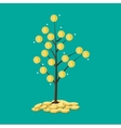 coin tree Concept of savings vector image vector image