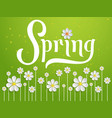 Elegant spring invitation card vector image