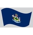 Flag of Maine waving on gray background vector image vector image