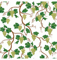 floral pattern with grape branch wineyard vector image vector image