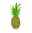 green pineapple tropical fruit isolated on white vector image