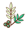 olives icon cartoon style vector image